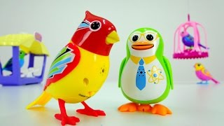 Видео для детей: Птички поют. Toys: интерактивные поющие птички DigiBirds и пингвин
