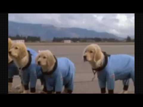 Space Buddies - full movie