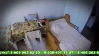 видео дератизация в Санкт-Петербурге