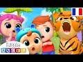 La Jungle des Animaux - Comptine Éducative - Chanson pour les petit en Français