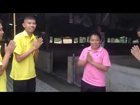 ภูมิปัญญาท้องถิ่นหมู่บ้านปลากัดจีน【OFFICIAL VIDEO】