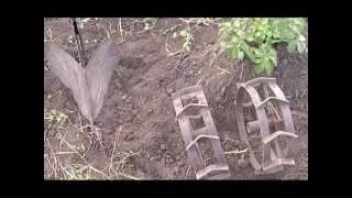 Прополка картофеля мотокультиватором(http://www.kurgan.ru/news_glic/motokultivator_i_propolka_veschi_sovmestimye.html., 2013-07-11T14:15:54.000Z)