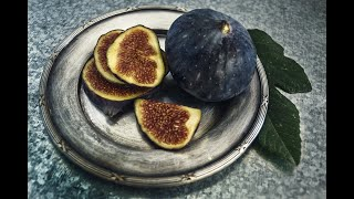 How to Pinch or Tip Fig Trees to Induce Fruiting (even in warm climates)