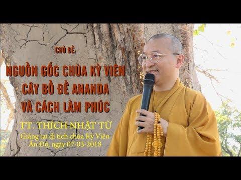 Nguồn gốc chùa Kỳ Viên, cây bồ đề Ananda và cách làm phúc - TT. Thích Nhật Từ