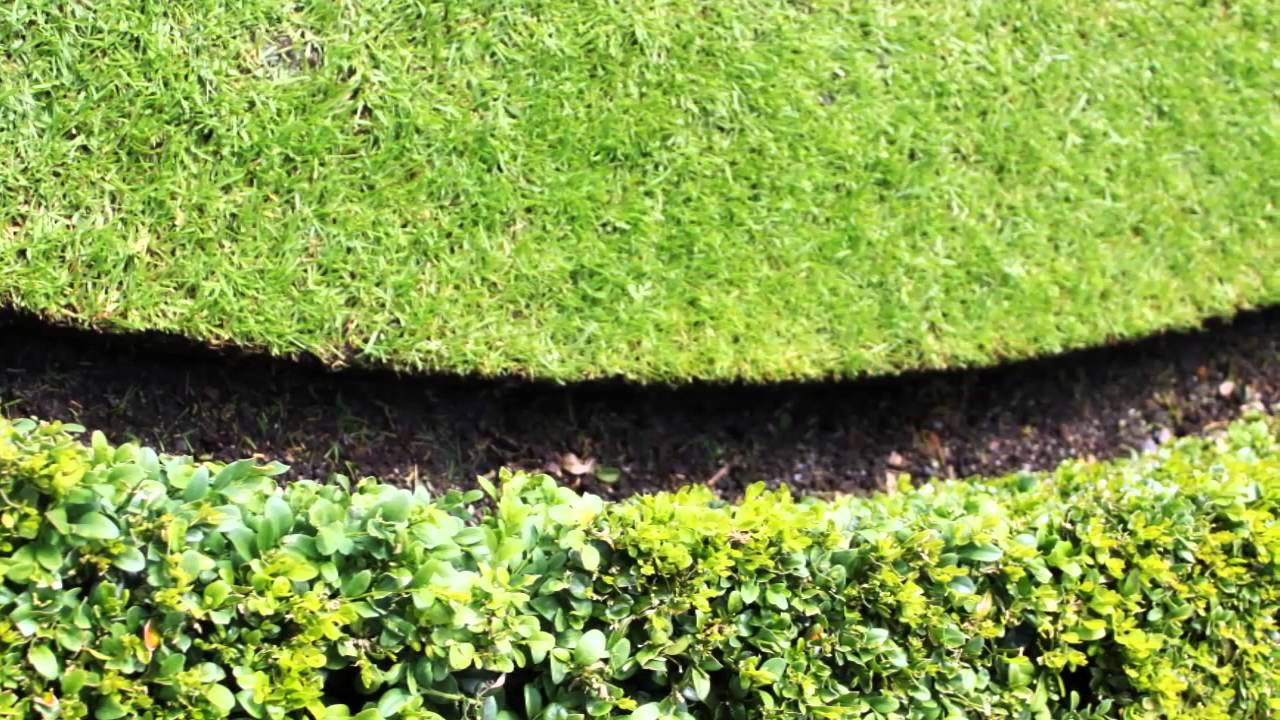 traditional lawn edging
