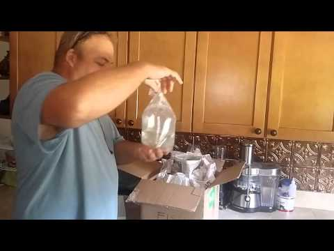 Starting to raise tilapia in the aquaponics system ep 66