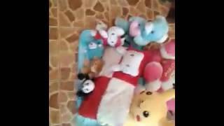 Homesale squishy,boneka,and slime(whit nayla rpn,rafa oktaviyanti,nada thahira