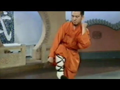 Shaolin kung fu 18 basic combat methods