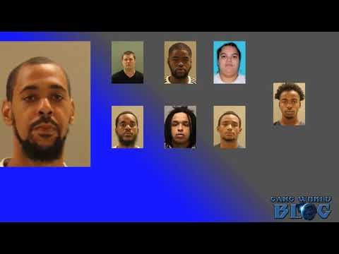 Drugs, ammo, cash found during 11 gang arrests in Edgemoor (Delaware)