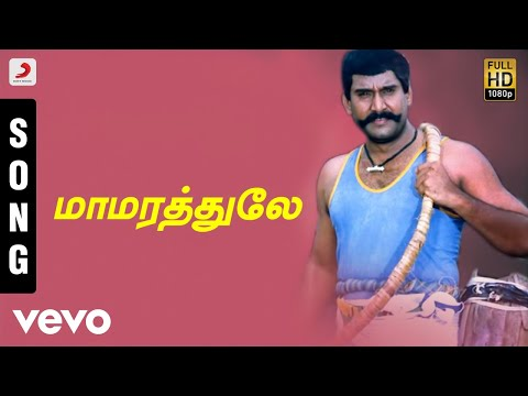 Karisakattu Poove - Mamarathule Tamil Song...