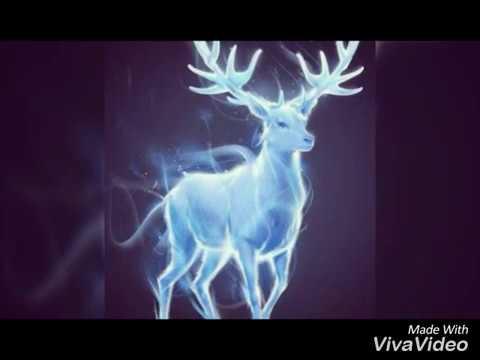 Sia - Deer In Headlights (Lyrics)