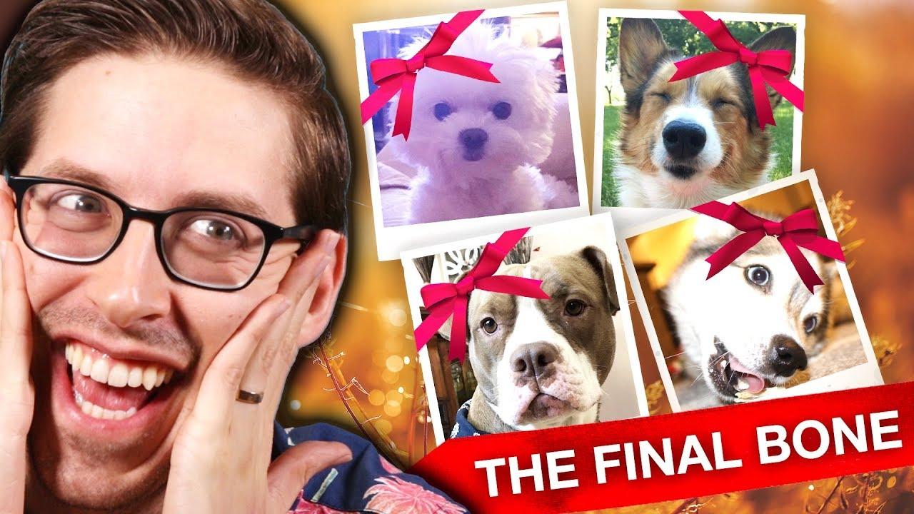 Keith Crowns Instagram's Next Dog Superstar