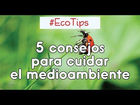 5 Consejos para cuidar el medioambiente (parte 1) ☞ #EcoTips