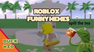 Roblox Memes | Duck Wig