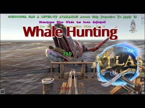 Whale Hunting | Atlas Tutorial