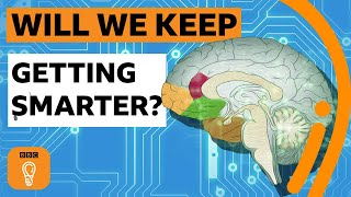 Will humans keep getting smarter? | BBC Ideas