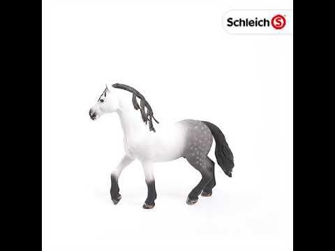 13821 /Étalon Andalou Schleich