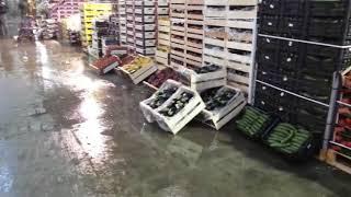 Molfetta. Piove nel mercato ortofrutticolo