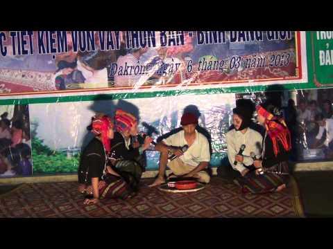Tieu pham truyen thong VSL va Binh Dang Gioi-Bao Luc Gia Dinh