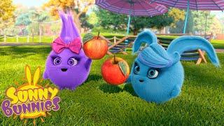 Cartoons for Children | SUNNY BUNNIES - VACATION | Funny Cartoons For Children