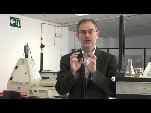 MOOC How Genomes Evolved- 2.2 The first animals (Universidad de Navarra)