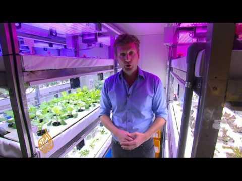 South Korea moving towards vertical farming