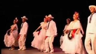 El Tilingo Lingo Veracruz Mexico Vivo Dance Company Las