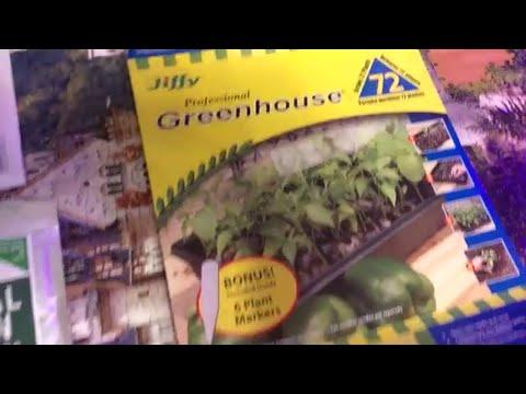 Garden Seeds Starter Kit