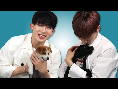 download Monsta X Plays With Puppies While Answering Fan Questions