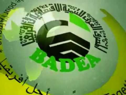 BADEA 40th Anniversary - Together for Africa