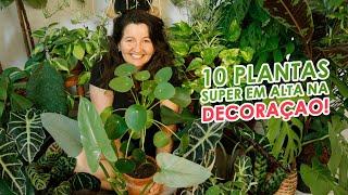10 Plantas que estão Super em Alta na Decoração