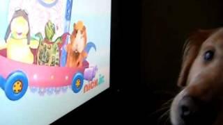 Wonder Pets thumbnail