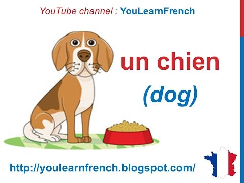 French Lesson 58 Animals In Vocabulary For Kids Les Animaux Pour Enfants Animales Para Niños