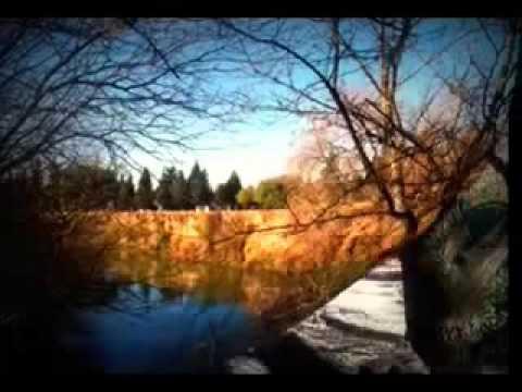 А.Вивальди «Времена года» в Англиканском соборе Святого Андрея...