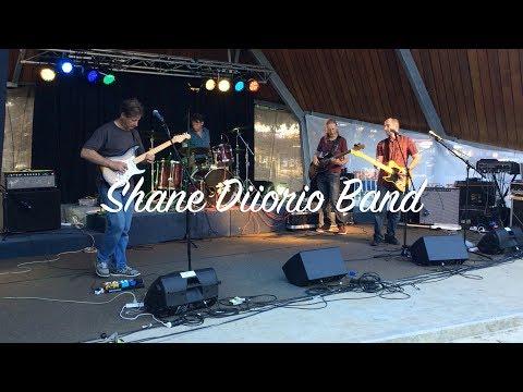 Shane Diiorio Band 01 The Basin Music Festival 2017