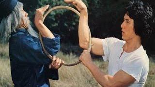 La serpiente a la sombra del aguila - Jackie Chan