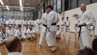 Naka Tatsuya Shihan - 1st Day of JKA National Seminar