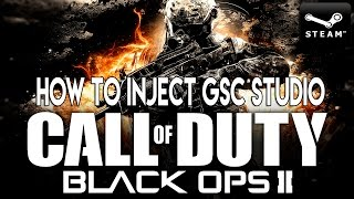 How To Inject GSC Studio Black Ops 2  PC