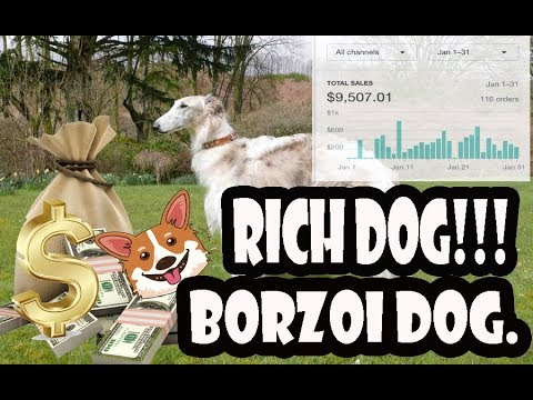 Borzoi Pet - Shopify dropshipping niche analysis for print on demand  business
