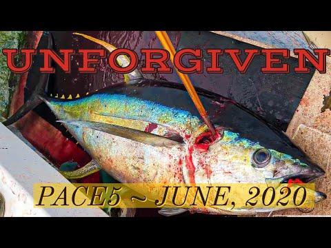 Unforgiven ~ PACE5 ~ June, 2020 ~ Ahi Fishing Hawaii