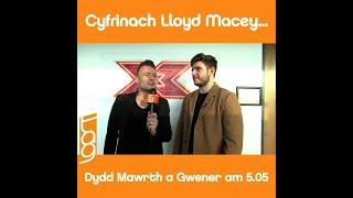 Sut i wneud y Frechdan Fish Finger orau erioed... gyda Lloyd Macey!