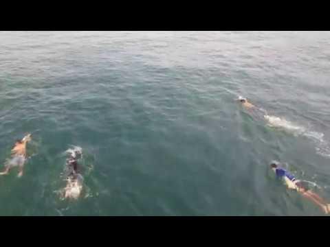 Nadando en aguas abiertas en el mar - Atami