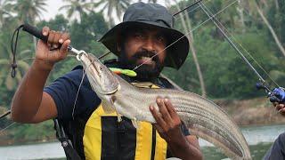 3KG ആറ്റുവാള പിടിച്ച് ഷാപ്പിലെ കറിവെച്ചത്  | WALLAGO ATTU FISH CATCH AND COOK | UNDER WATER FISHING