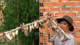 Đánh Kèo Chim Sẻ Này Gỡ Chim Đã Luôn AE - Gặp Bầy Sẻ Cả 1000 con