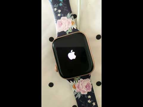 Apple Watch Series 4 Battery Stuck On 100%