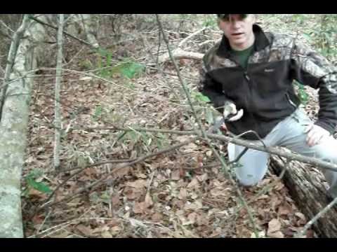 Making Natural Ground Blinds