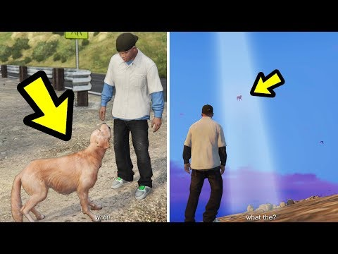 GTA 5 - If you follow the Ghost Dog.. this happens!