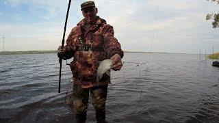 Рыбалка на донки НА ВОЛГЕ 2021