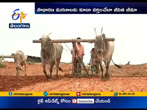 Farmers in Telangana | to Get Rs 5 Lakh Insurance Cover | From August 15