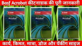 Basf Acrobat Fungicide Basf Systemic Youtube